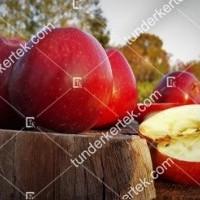 termek815//delicious-815-707905784-1200.jpg / Delicious (régi fajta)